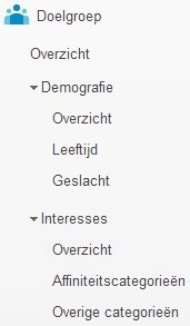 Google-Analytics-Demografie-Interesses